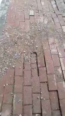 Gebze Arapçeşme Mahallesi'nde bir sokakta çekilen görüntüler pes dedirtti